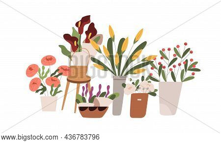 Fresh Blossomed Flowers, Spring Floral Plants In Buckets, Vases And Pots. Blooming Flora Composition