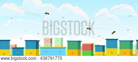 Apiary. Rural Farm Landscape With Colorful Bee Hives. Bright Summer Sky With White Clouds And Flight