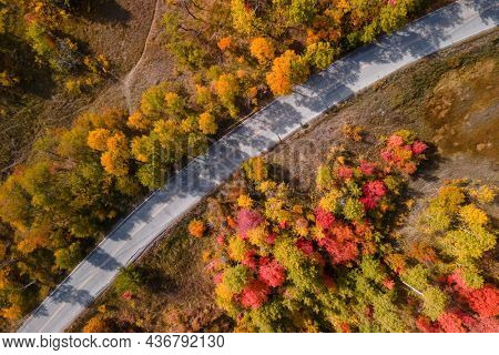 Aerial view of colorful fall foliage along scenic byway Snow basin road in Utah