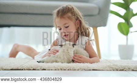 Child girl with ragdoll kittens lying on carpet on floor and petting pets. Beautiful female kid with kitty cats at home