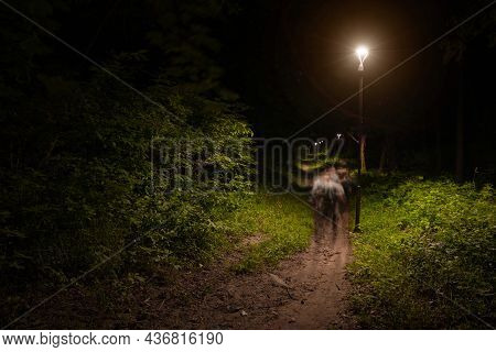 Night Park Outdoor View Of Dirt Lonely Passage Under Lantern Light With Abstraction Fuzzy Human Silh