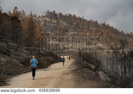 Jerusalem, Israel - September 7th, 2021: People Jogging And Hiking On A Path In A Forest Burnt By A