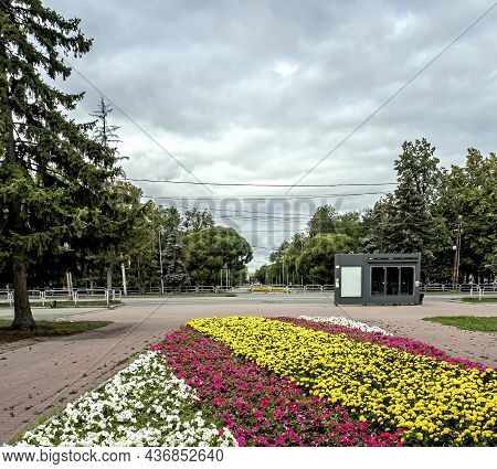 Flower Bed In The City In Autumn