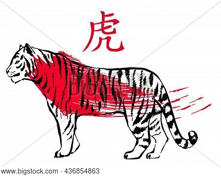 Vector Illustration Of A Tiger In Traditional Asian Ink Calligraphy Style. Lunar New Year. Chinese T