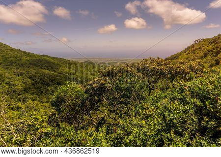 View From Above Of Tropical Forest And Valley At Viewpoint, A Nature Reserve Of Mauritius Island In