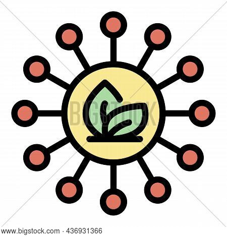 Herbal Scheme Icon. Outline Herbal Scheme Vector Icon Color Flat Isolated