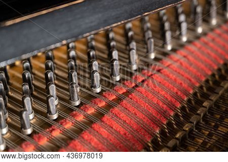 Close-up View To Pins Or Pegs With Strings And Red Felt Inside An Older Grand Piano, Part Of The Aco
