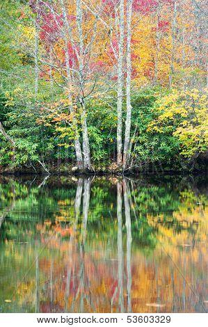 Autumn Lake Reflections Blue Ridge Parkway Price Lake