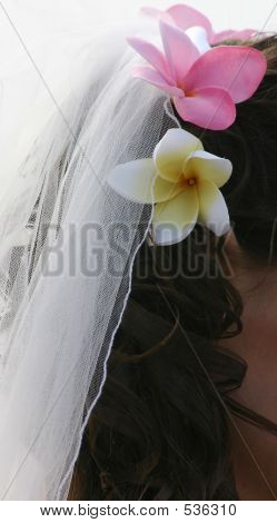 Bride's Hair, Veil And Frangipani Flowers
