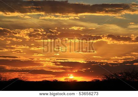 Sunset Background - Golden Beauty of the Wild and Wilderness