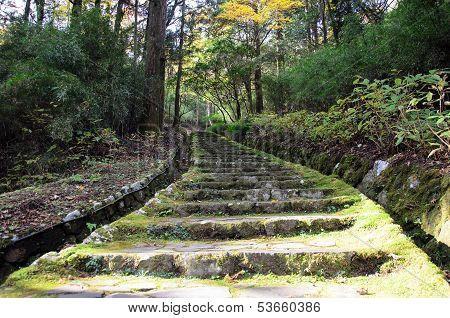 Stone Staircase With A Moss.