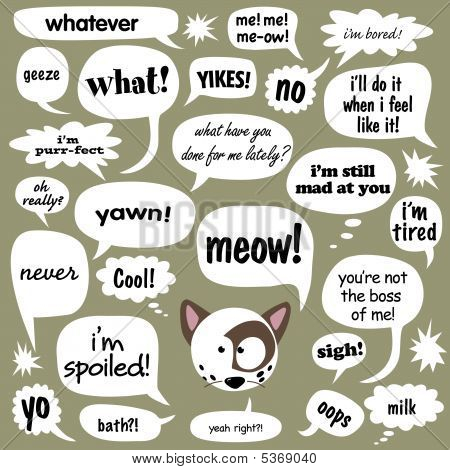 Cat and various phrases in comic balloons 1