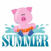 Summer Splash Graphic 2 Vector with pig splashing poster