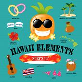 Hawaii Elements Vector Set Vector with pineapple poster