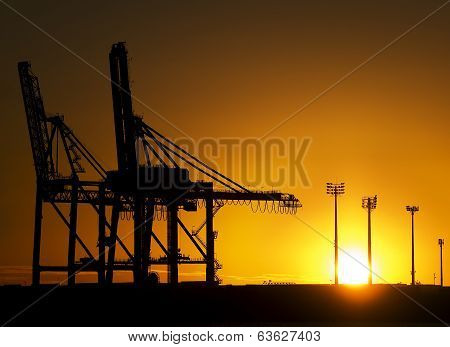 Monster Cranes At Sunrise