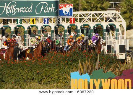 Hollywood Park Turf Race Gate Break