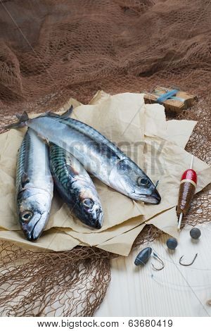 Still life about sportive fishing for mackerel and some related items poster
