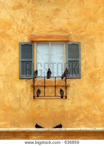 Birds On A Windowsill-Portrait Style