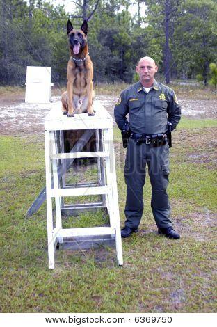 Police K9