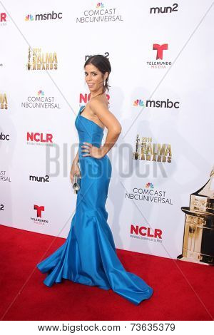 LOS ANGELES - OCT 10:  Ana Ortiz at the 2014 NCLR ALMA Awards Arrivals at Civic Auditorium on October 10, 2014 in Pasadena, CA