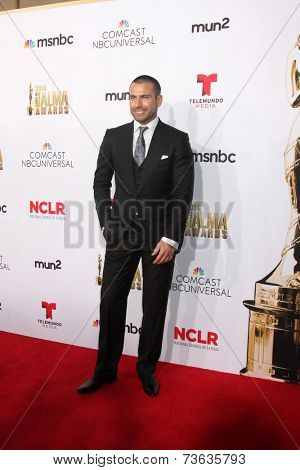 LOS ANGELES - OCT 10:  Rafael Amaya at the 2014 NCLR ALMA Awards Arrivals at Civic Auditorium on October 10, 2014 in Pasadena, CA
