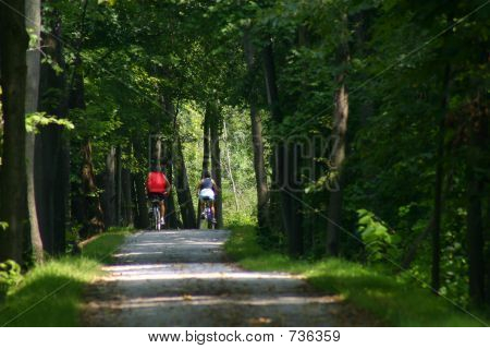 Couple on Bicycle Trail