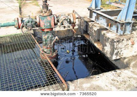 Oil Pollution
