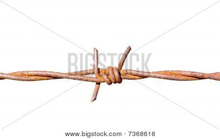 Weathered and rusted barb wire isolated on white
