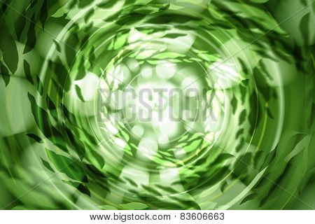 Green Abstract Light Background Defocused