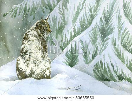 Bobcat under the snow