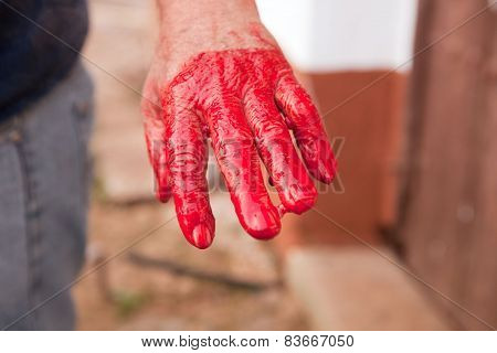 Traditional home slaughtering in a rural area. Farmer hand after stiring the blood poster