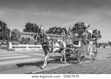 Horse Carriage Front Of Wat Phrathat Lampang Temple