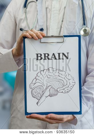 Neurologist Doctor Holds Clipboard With Brain Drawing