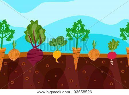 Growing Vegetables Illustration