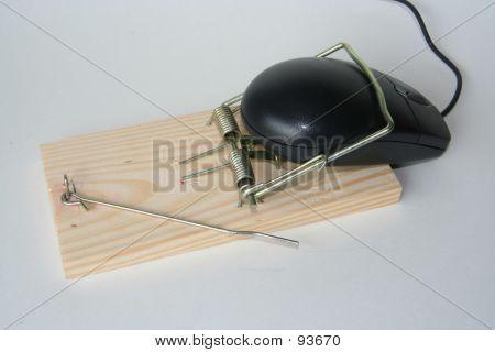 Computer Mouse Trap