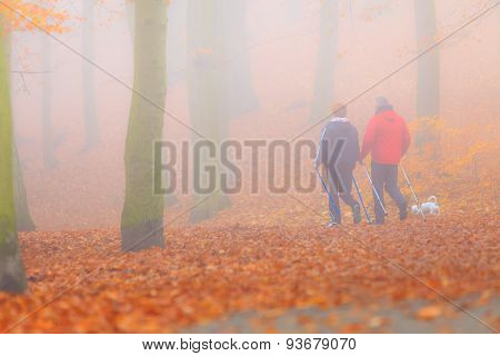 Rear View Couple Walking In Autumn Forest.