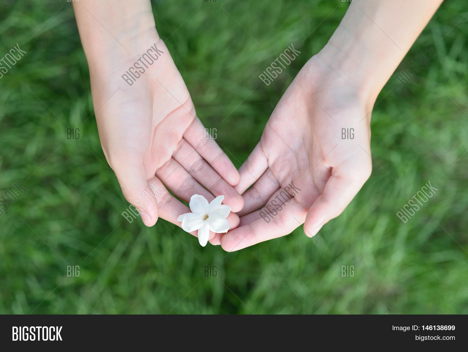Asian girl hands image photo free trial bigstock asian girl hands holding white jasmine flowers this flower is symbol of thailand mothers day izmirmasajfo