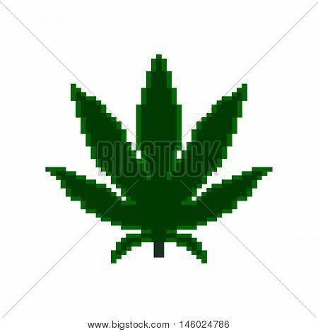 Pixel icon. Pixel marihuana on the white background.