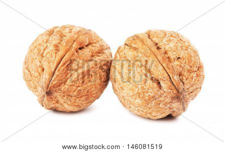 two walnuts in a shell, isolated on white background