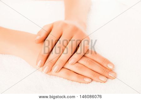 Woman's Hands With Beautiful Manicure Isolated On White Background
