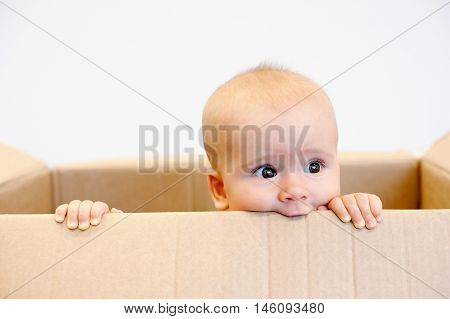 Baby todler in a carton box dreaming
