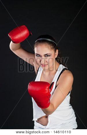 Expressive Girl Boxer