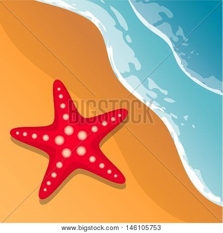 Beach background. Sea shore. The waves and sand. Starfish. Vector Image.