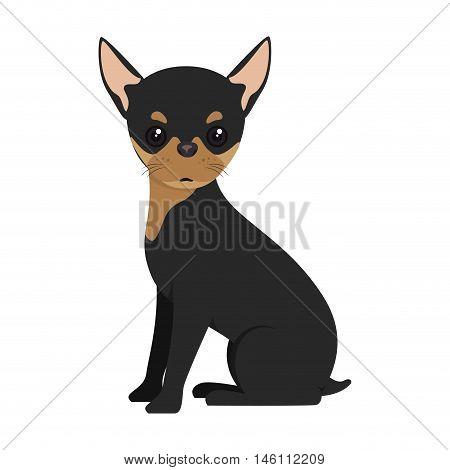 pinscher dog breed canine pet animal. puppy cartoon. vector illustration