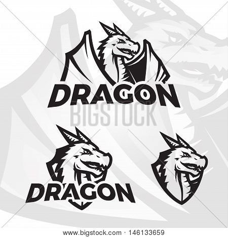 Dragons sport mascot. College league insignia, Dragon school team vector illustration.
