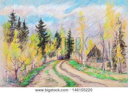 Rural road in wood birches and old spruces