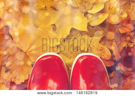 footwear, autumn and season concept - close up of red rubber boots on fallen yellow autumn leaves