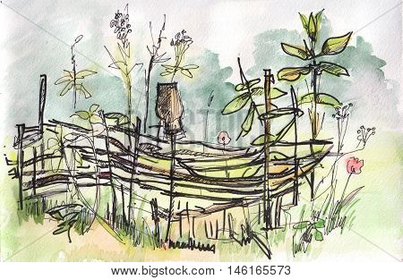 The instant sketch wattle fence with flowers watercolor