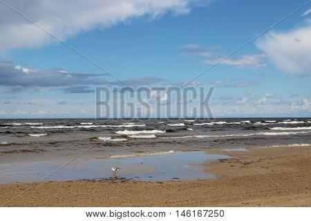 Beautiful beaches of Baltic sea Jurmala Riga Latvi