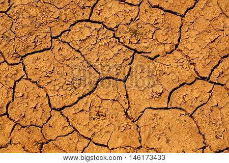 Dry soil with cracked waterless surface texture of brown earth on natural background